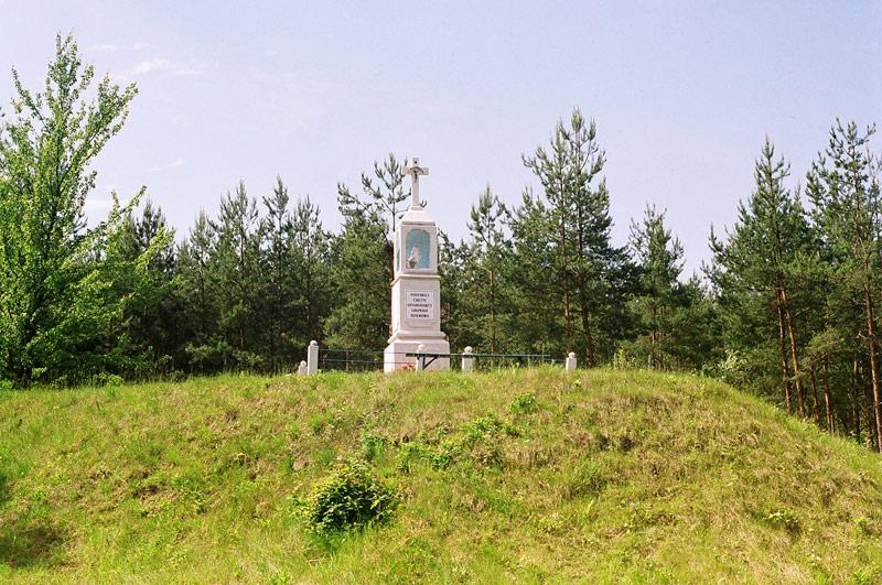 Białkowo - Przydrożna kapliczka - fot.A.Hermann
